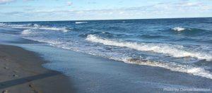 Beach-denise-credit