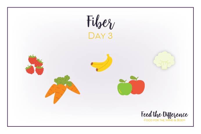 FTD – Day 3 – Fiber